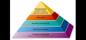 maslow piramis