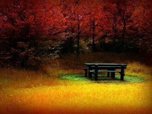 pad őszi háttérrel